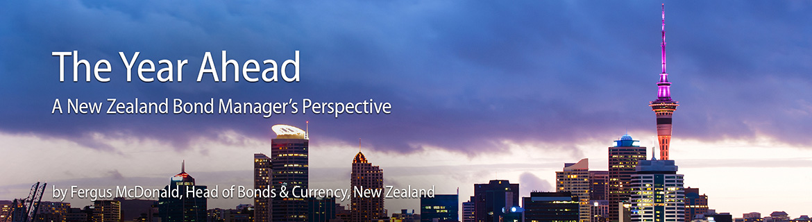 A New Zealand Bond Manager's Perspective on the Year Ahead